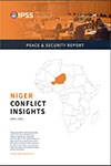 Niger Conflict Insights