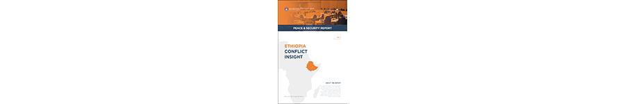 Ethiopia Conflict Insight